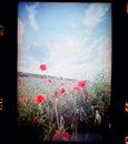 Lomo Film Scanner Nokia Pureview 808