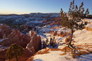 Michael Pollmann Bryce Canyon 3 NEX 7 | 1/500 sec | f/3.2 | 12.0 mm | ISO 100