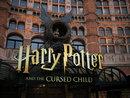 Harry Potter - JPEG straight from camera | 1/90 sec | f/4.5 | 45.0 mm | ISO 400