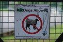 f/2.5 Dog Sign PP* | 1/600 sec | f/2.5 | 50.0 mm | ISO 160