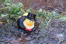 Frozen Duck | 1/80 sec | f/4.0 | 55.0 mm | ISO 400