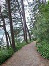 "Path | <a target=""_blank"" href=""https://www.magezinepublishing.com/equipment/images/equipment/Xperia-1-II-7556/highres/DSC_0065_1593526530.jpg"">High-Res</a>"