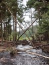 "River | <a target=""_blank"" href=""https://www.magezinepublishing.com/equipment/images/equipment/Xperia-1-II-7556/highres/DSC_0088_1593526698.jpg"">High-Res</a>"