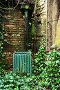 Green Bin In Green Corner | 1/30 sec | f/3.2 | 50.0 mm | ISO 400