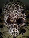 Skull Photo Mode Low Light   1/14 sec   f/1.8   4.7 mm   ISO 3019