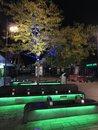 Street Lights   1/10 sec   f/1.8   4.0 mm   ISO 100
